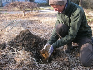 Michaelann puts dirt