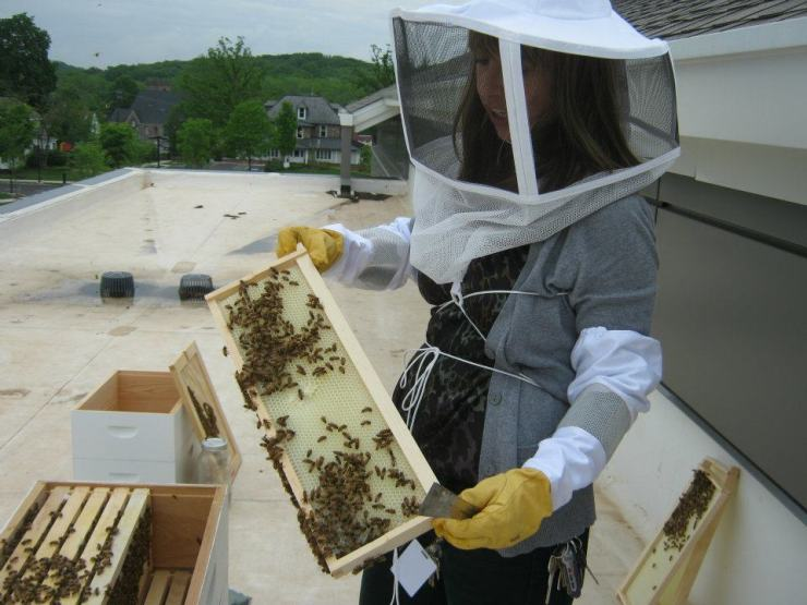 What were this woman's parents trying to prove, letting her become a beekeeper?