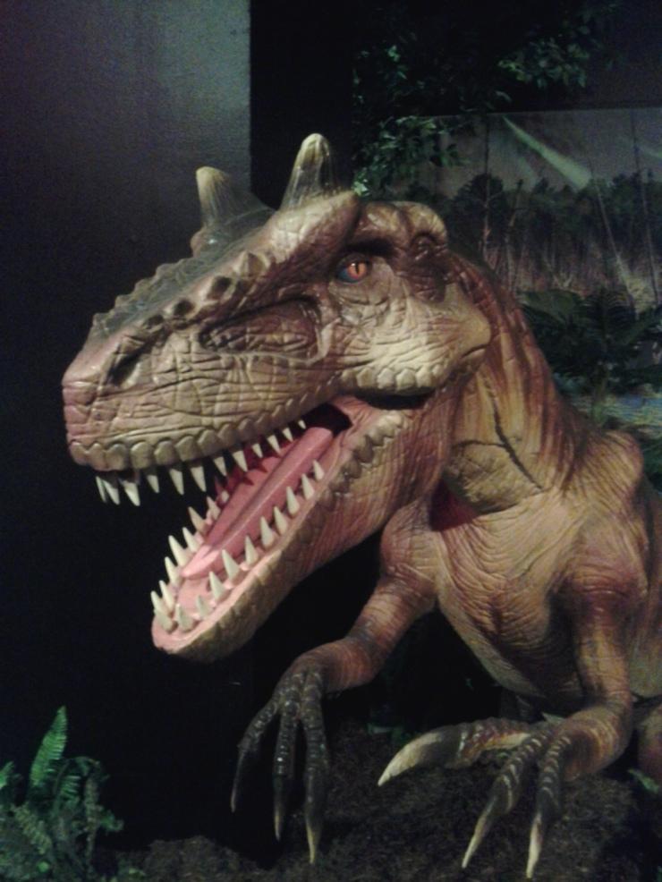 Allosaurus!