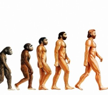 and then we all became white men casual racism in evolutionary  : evolution diagram - findchart.co